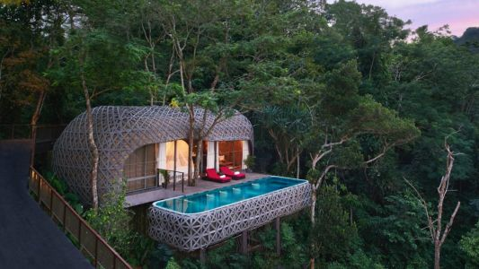 10 breathtaking forest escapes for nature lovers