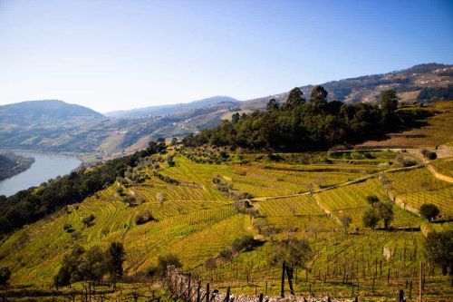 Travel in Rural Portugal: Discovering Centuries-Old Tradition