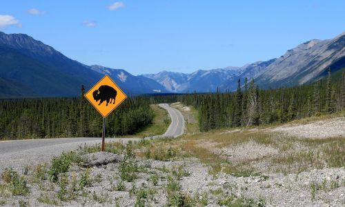8 of British Columbia's most spectacular road trips