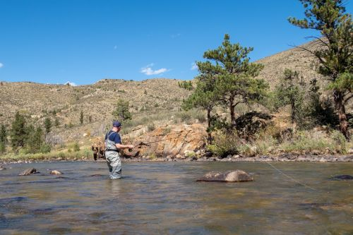 Fly Fishing for Beginners: A Guided Trip on the Poudre River