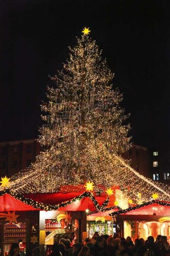 Sally Tagg finds her Christmas spirit aboard a European winter cruise