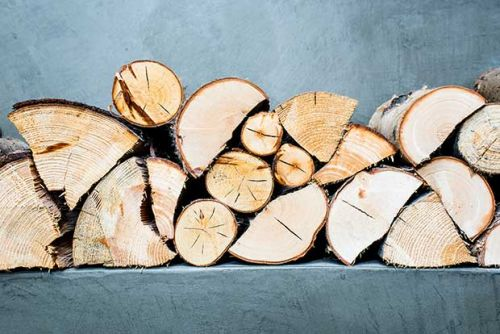 The best New Zealand trees to use for firewood by region