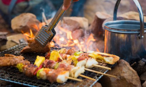 The secrets of delicious camp cooking by Monica Rivron