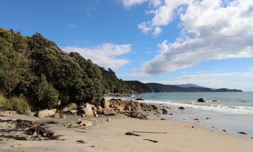 Wander Woman: Counting stars on Stewart Island