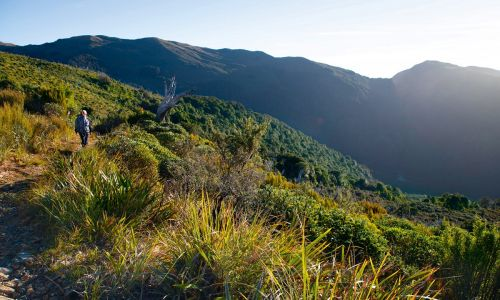 On the road again: New Zealand's new Great Walk, the Paparoa Track