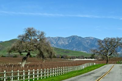 Your Top California Wine-Tasting Itinerary: Santa Barbara