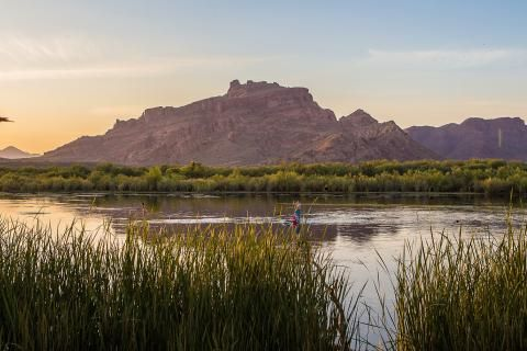 Five things to do in Mesa, Arizona