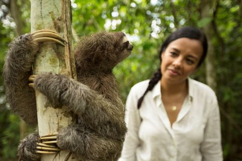 Liz Bonnin: My 7 most amazing wildlife experiences