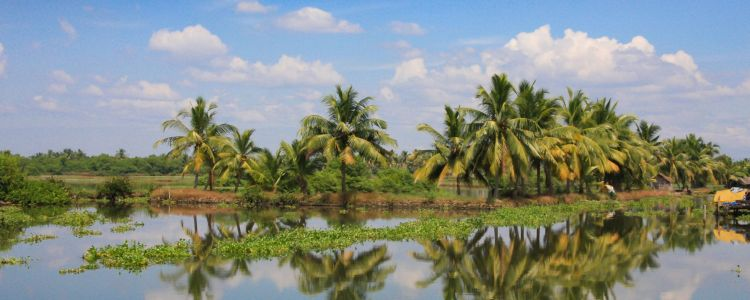 Spectacular Southern India