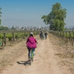 Three Ways To Experience Chilean Wine in Santiago
