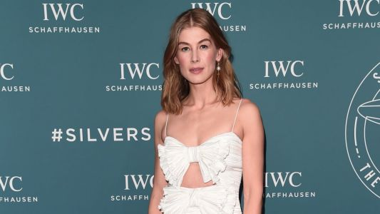 Great Outfits in Fashion History: Rosamund Pike Looking Like an Angel in Bow-Adorned Givenchy