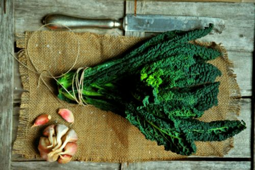 How to harvest and cook kale correctly