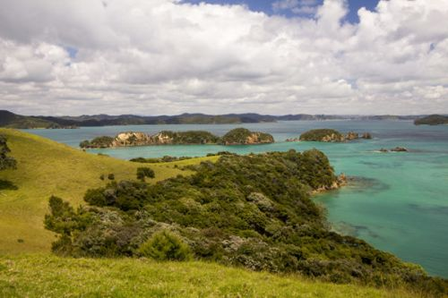 Guardians of the Bay of Islands