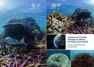 World Heritage coral reefs likely to disappear by 2100 unless CO2 emissions reduce drastically