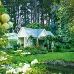 What's On: Garden Marlborough