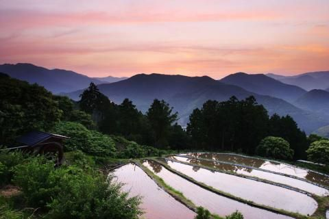 Three off-the-beaten-track adventures in rural Japan