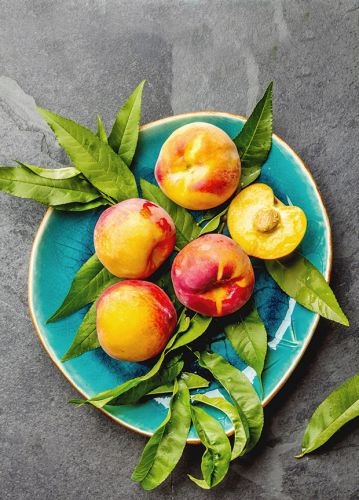 What is a plumcot anyway? Meet the three delicious summer fruit hybrids to grow-Plus easy peacherine cake