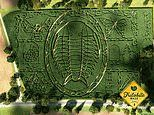 Can YOU find your way out of these amazing corn mazes?
