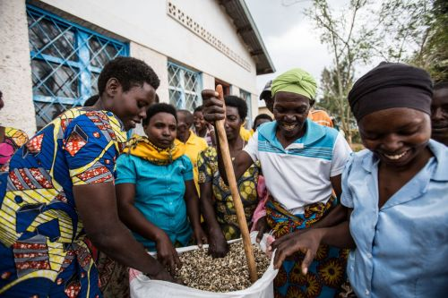 24 Years After the Rwandan Genocide, the Country's Moringa Oil Is Helping Rebuild