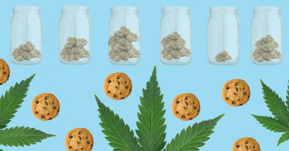 Colorado Girl Scouts are now allowed to sell their cookies in front of weed dispensaries