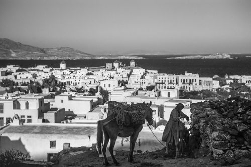 Photo gallery: What did Mykonos look like in the 1950s?