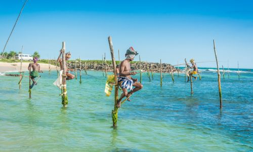 12 of the best things to do in Sri Lanka