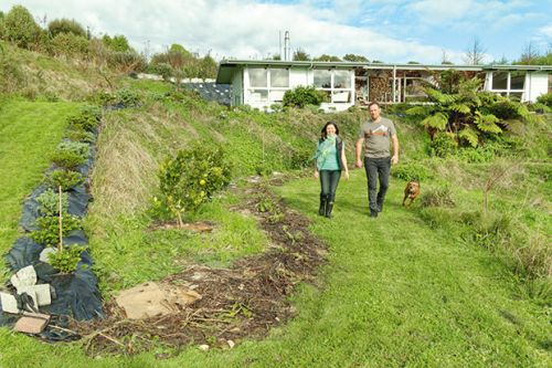 How this New Plymouth couple transformed a steep, wet block with earthworks