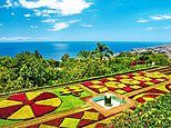 Discover Madeira's magical gardens with TV's Joe Swift