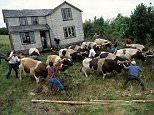 Chiloe in Chile where residents literally move houses