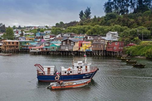 Chilling Out in Chiloé: A Story of Survival