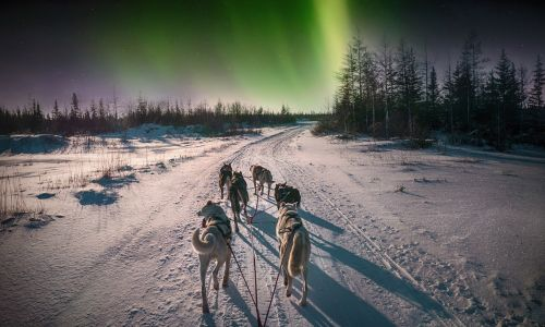 11 alternative northern lights trips, from husky sledding in Norway to photographing Iceland