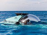 Incredible £4.1million luxury Triton submarine that can dive to 3,280ft