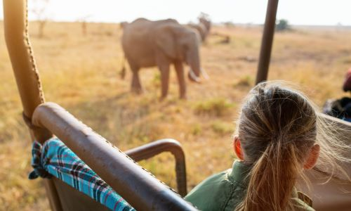 Meet the icons: 9 life-changing family holidays you'll want to book now