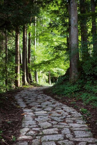 The Kiso Road Trail: Exploring the Japanese countryside by foot with Walk Japan