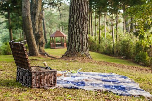 Be in to win a romantic getaway for two at Falls Retreat in Waihi, valued at $375