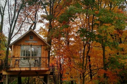 The most dreamy tree houses on Airbnb right now