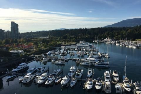 Why the Westin Bayshore is Vancouver's most wildlife-friendly hotel