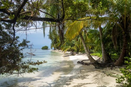 Best Time to Visit Panama and Costa Rica