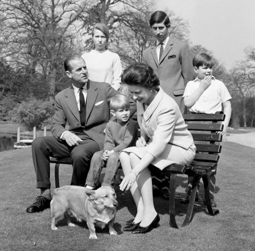 As The Queen's Last Corgi Dies, An Era Ends -And Royal Footmen Are Likely Breathing Easier
