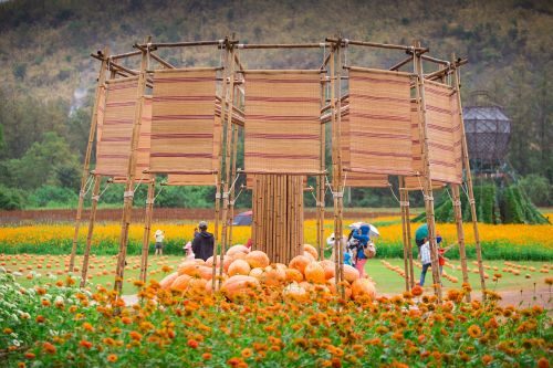 Jim Thompson Farm celebrates Isan's culinary delights and sustainable eating culture