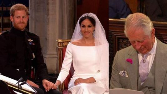 Harry-Meghan Royal wedding biggest fails: Charles dozing off to horse going crazy