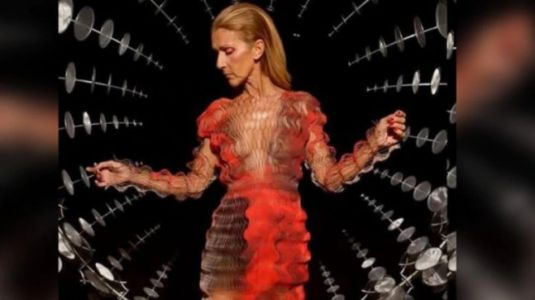 Celine Dion leaves fans in shock with new pics from Paris Fashion Week. Scarily thin, says Internet
