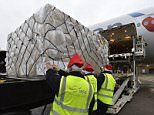 Heathrow to handle 143million kg of Christmas goods