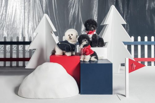 Weekly Obsessions: Moncler dog couture, Brioni's velvet tuxedo and more pre-holiday festive flair