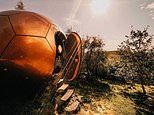 Is this the UK's nuttiest place to stay? The incredible copper-clad 'Conker' glamping pod in Wales
