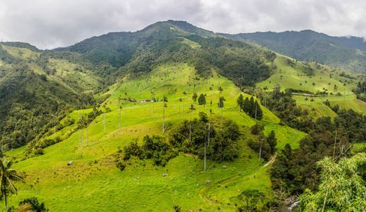 Beyond Coffee: Salento, Colombia