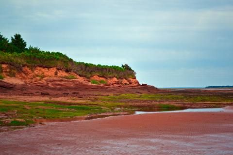 Can PEI reach their 7 per cent protected land goal by the end of the year?