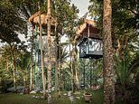 Inside the incredible boutique treetop hotel in Bali that boasts luxurious four-poster beds