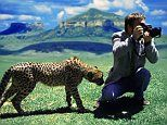 The times curious critters interrupt wildlife photographers