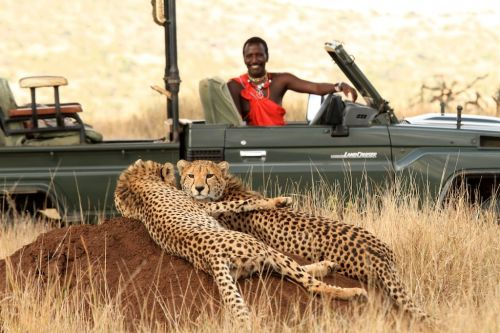 Can a five-year-old really appreciate a safari holiday?